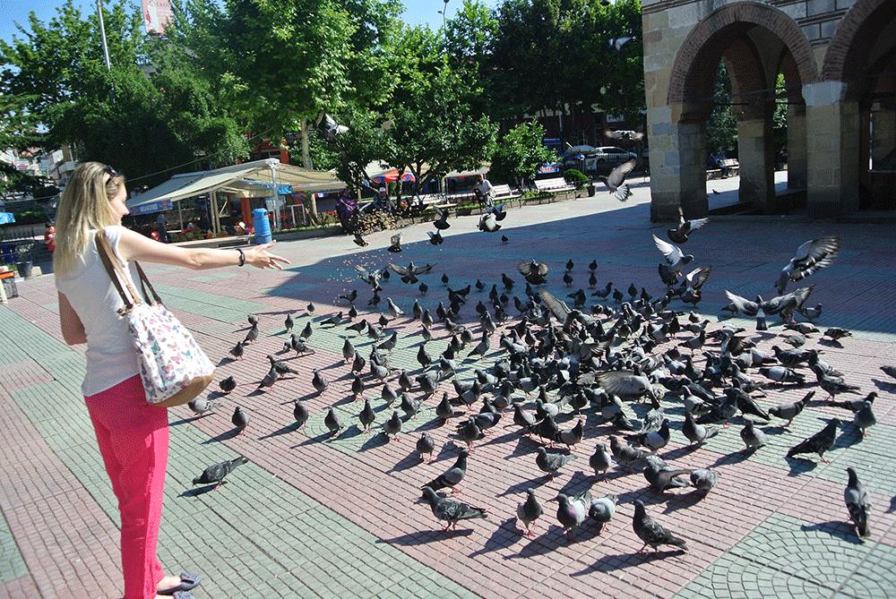 Merkezde kuşları beslerken