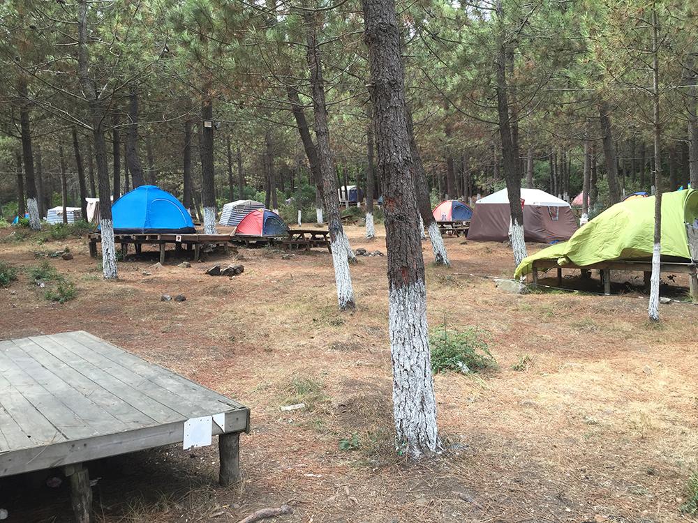 Orman içi kamp alanı