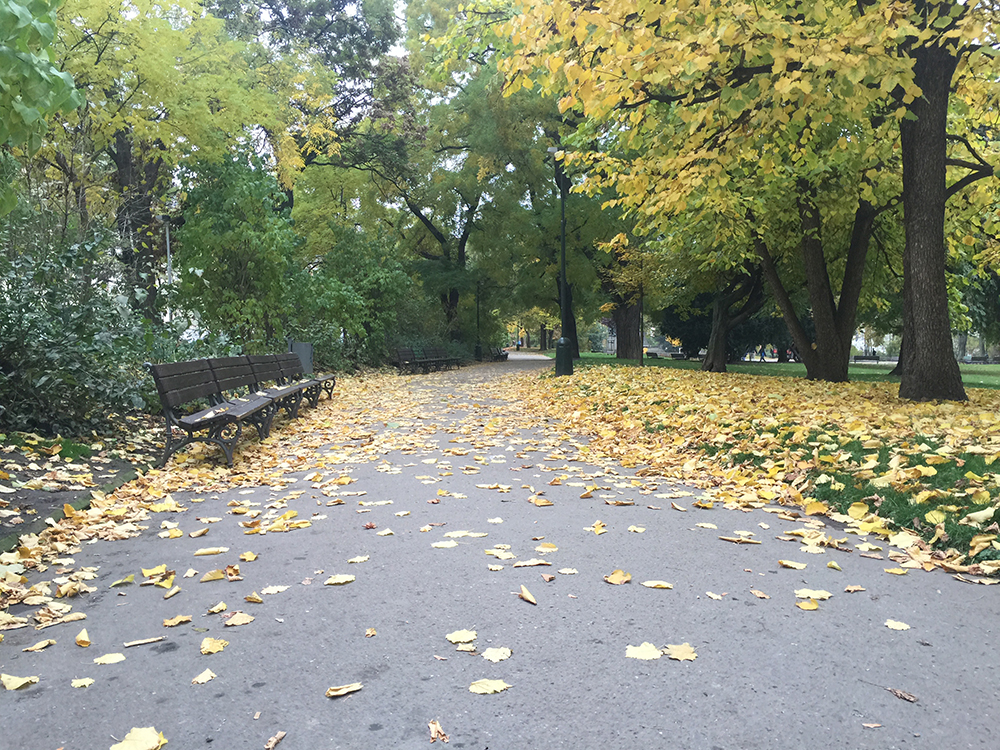 Sonbahar da Karl Meydanı